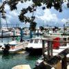 The Galleon Marina Docks | Best Beach Boutiques | Snag-A-Slip