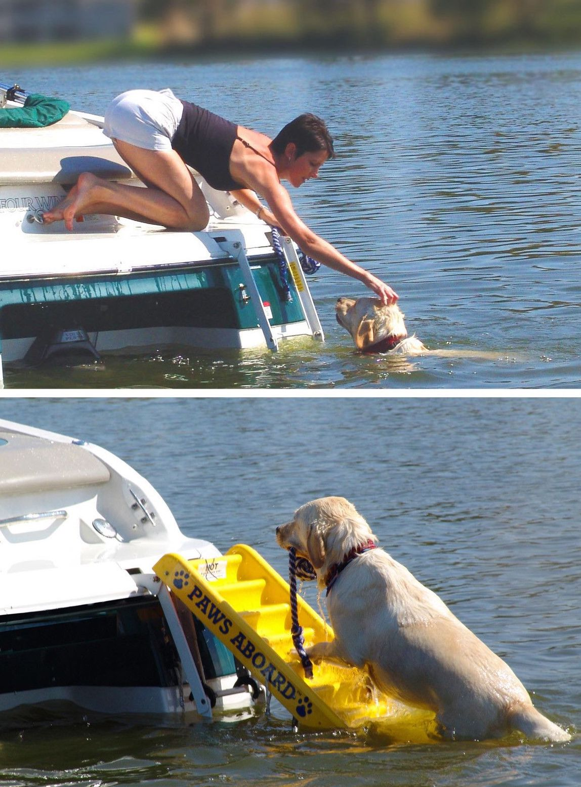 Paws Aboard | Boating Accessories | Snag-A-Slip