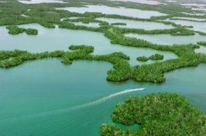 Everglades Isle Marina in Florida - Snag-A-Slip