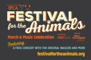 Join Us at SPCA-Maryland's Festival for Animals in Baltimore