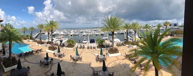 Westshore Yacht Club Palms | Snag-A-Slip