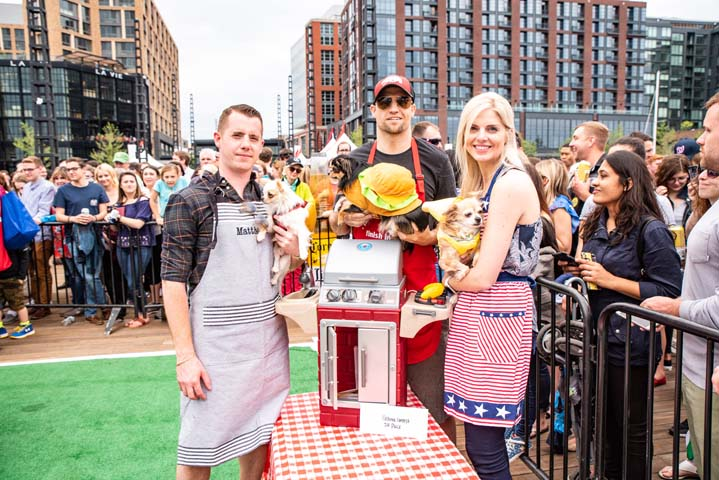 Guests at the Wharf | Running of the Chihuahuas | Snag-A-Slip