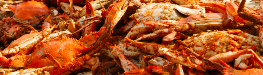 Chesapeake Bay's Best Crab Decks