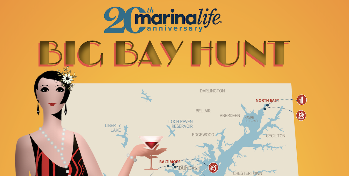 Big Bay Hunt 2020 – Marinalife
