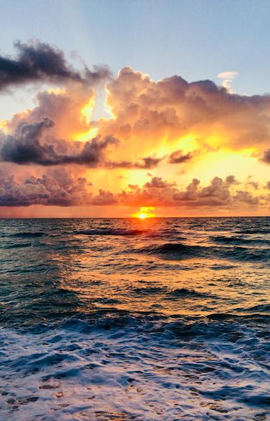 Photo by Stefania Lisa Pozza on Unsplash | Miami, Florida | Snag-A-Slip