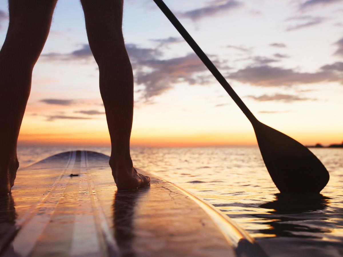 Snag-A-Slip Blog - Dog Days of Summer - paddle board