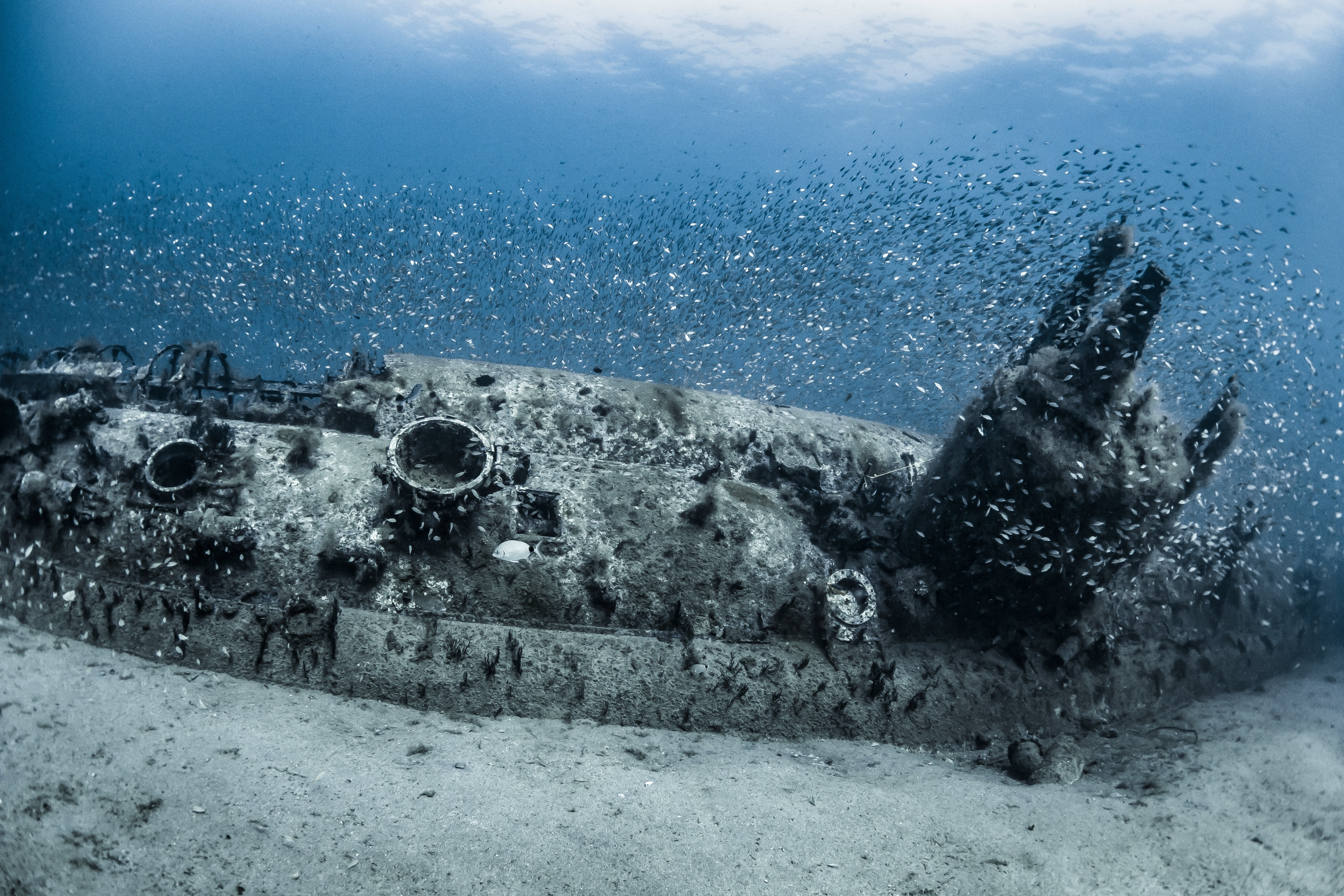 Olympus Dive Center Photo of sunken submarine | NC Shipwrecks | Snag-A-Slip