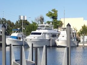 Yacht Haven Marina Docks | New Southeast Marinas | Snag-A-Slip