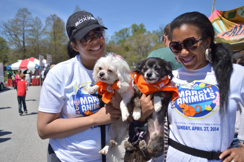 Join Us at the Festival for Animals in Baltimore!