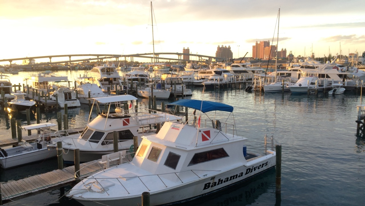 Nassau Yacht Haven | New Marinas Added in February | Snag-A-Slip